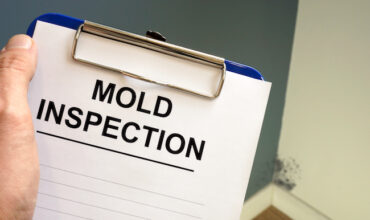 free mold inspection in Wapato